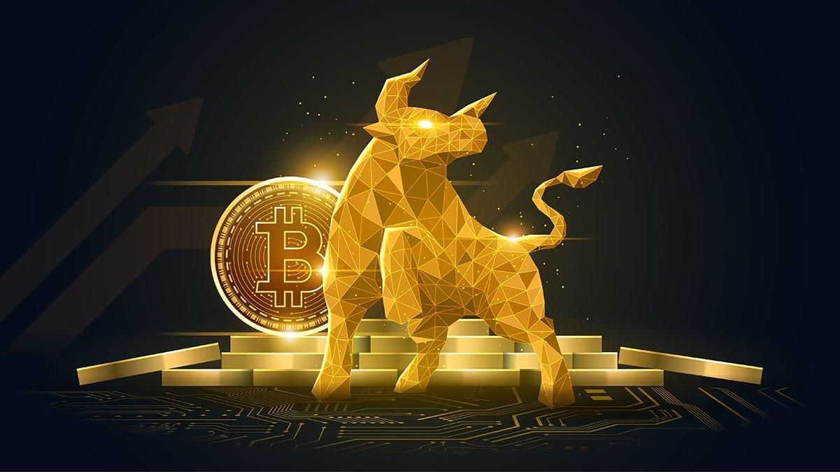 historia del bitcoin bitcoin 401k fidelitate